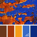 sochetanie-oranzhevogo-075