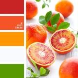 sochetanie-oranzhevogo-368