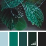 sochetanie-zelenogo-010