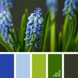 sochetanie-zelenogo-015