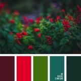 sochetanie-zelenogo-019