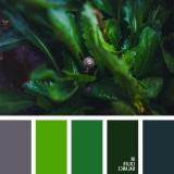 sochetanie-zelenogo-025