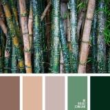 sochetanie-zelenogo-042