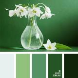 sochetanie-zelenogo-091
