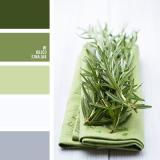 sochetanie-zelenogo-180