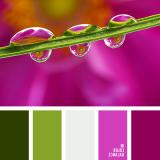 sochetanie-zelenogo-185