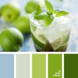 sochetanie-zelenogo-222