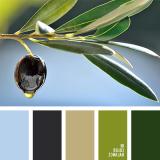 sochetanie-zelenogo-227