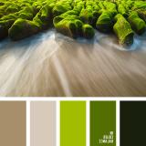 sochetanie-zelenogo-292