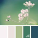 sochetanie-zelenogo-346