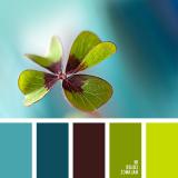 sochetanie-zelenogo-389