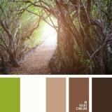 sochetanie-zelenogo-391