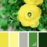 sochetanie-zelenogo-405