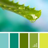 sochetanie-zelenogo-410
