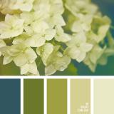 sochetanie-zelenogo-421