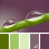 sochetanie-zelenogo-438