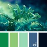 sochetanie-zelenogo-449