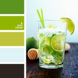 sochetanie-zelenogo-498