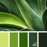 sochetanie-zelenogo-528