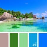 sochetanie-zelenogo-529