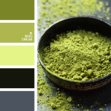 sochetanie-zelenogo-533