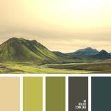 sochetanie-zelenogo-536