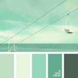 sochetanie-zelenogo-544