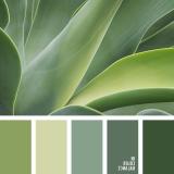 sochetanie-zelenogo-585