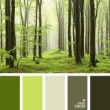 sochetanie-zelenogo-587