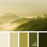 sochetanie-zelenogo-625