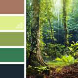 sochetanie-zelenogo-632