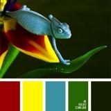 sochetanie-zelenogo-646