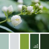 sochetanie-zelenogo-658