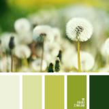 sochetanie-zelenogo-665