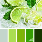 sochetanie-zelenogo-678