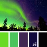 sochetanie-zelenogo-679