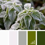 sochetanie-zelenogo-686