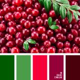 sochetanie-zelenogo-711
