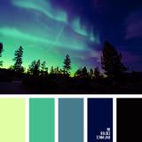 sochetanie-zelenogo-723