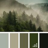 sochetanie-zelenogo-744