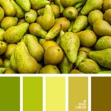 sochetanie-zelenogo-749