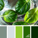 sochetanie-zelenogo-770
