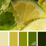 sochetanie-zelenogo-775