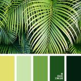 sochetanie-zelenogo-776