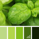 sochetanie-zelenogo-798