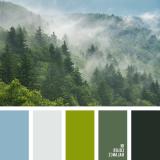 sochetanie-zelenogo-800