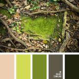 sochetanie-zelenogo-809