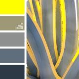 sochetanie-zheltogo-501