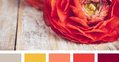 цветовая палитра красного цвета