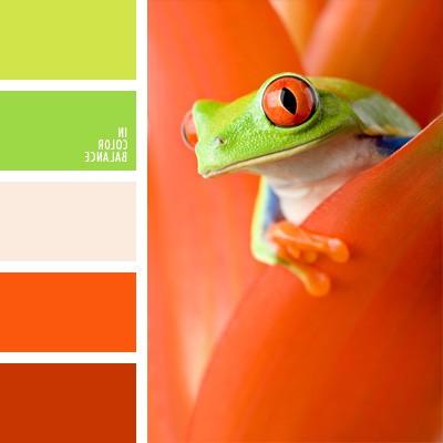 цветовая палитра сочетания оранжевого цвета